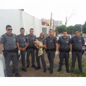 PM's de Campinas realizam parto em frente à Base da Companhia