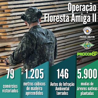 Operação Floresta Amiga II apreende madeira ilegal em São Paulo